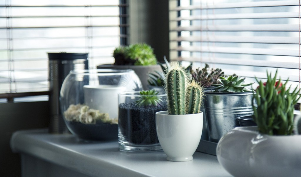 , Interior Design Trends to Look out for in 2016
